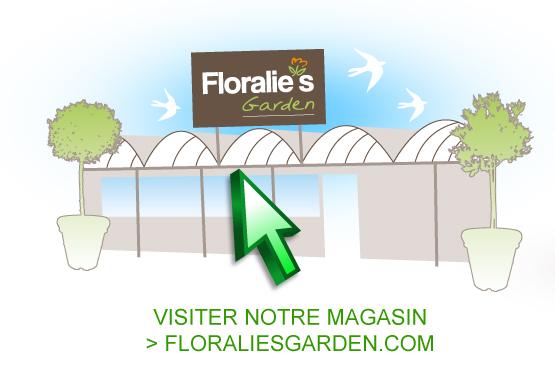 spa gonflable floralie's garden